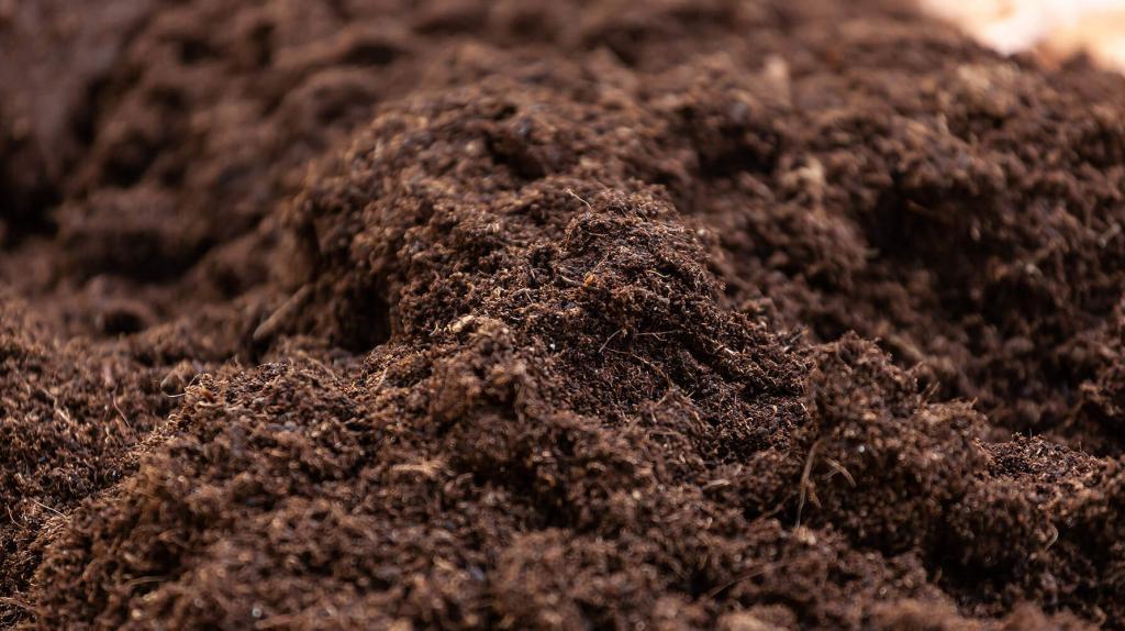 Soil contains Fulvic acid